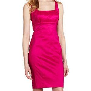 Sale! Raspberry Satin Sheath Dress (Calvin Klein)
